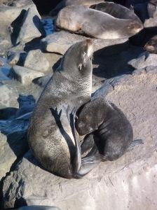 mom nursing her baby