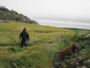 Harry and Lena,(matt and kelly's dog) enjoying the walk in the rain