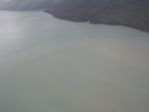 on our flight you could see the water break, this is where the river water (silty from the glacier) and the ocean water, bluer and clear, meet!